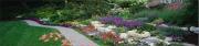 Garden (D)