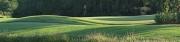 Golf 1 (D)