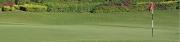 Golf 2 (D)