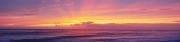 Sunrise (D)